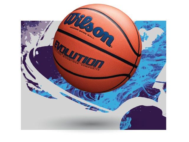Wilson Evolution Exclusive Edition Basketball