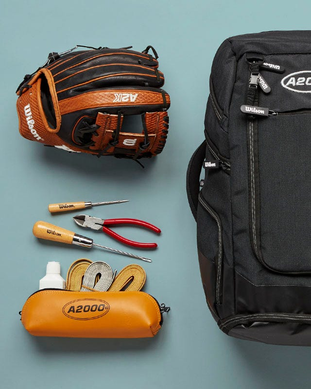 Lay down of items from the WIlson Baseball Gift Guide