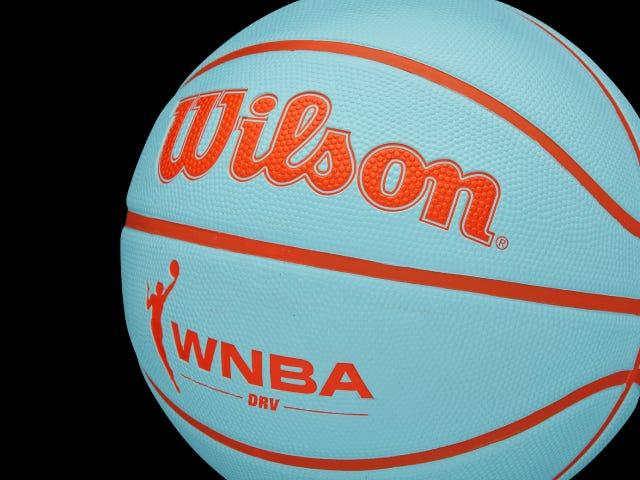Wilson WNBA DRV Basketball