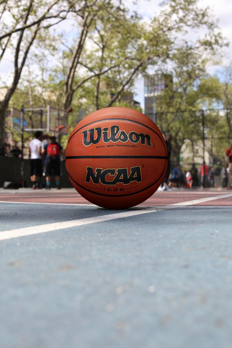 Wilson Evolution Basketball on a court