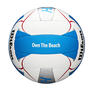 "blue and white volleyball closeup that says ""own the beach"""