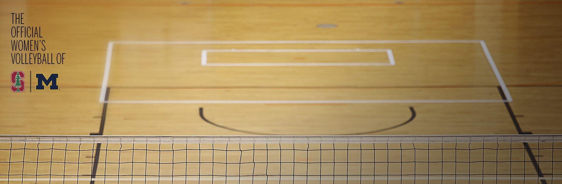 Performance Indoor Volleyballs