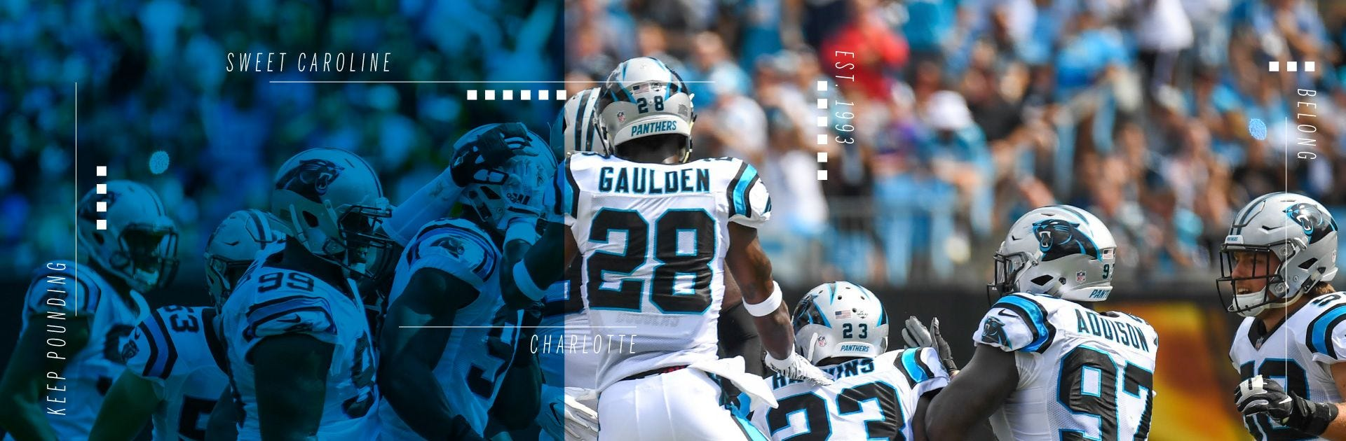Carolina Panthers Footballs Gear Wilson Sporting Goods